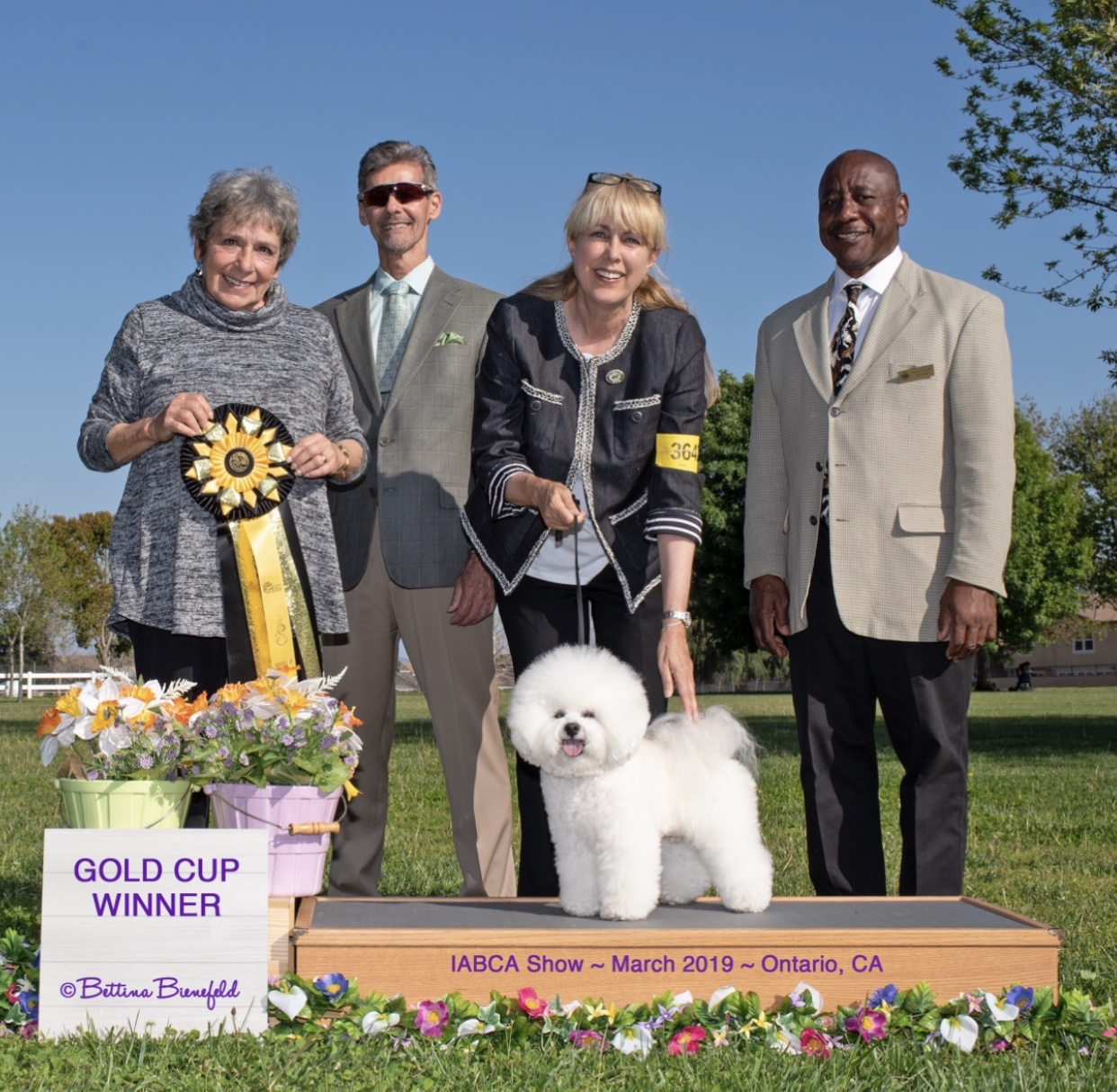 Oliver Norse Adds New Titles - BIchon Frise Club of San Diego